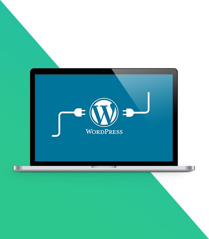 WordPress Intro Wrap